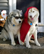 Little Red Riding Hood & her Big Bad Wolf Dogs Homemade Costume