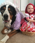 Little Red Riding Hood with her Big Bad Wolf Homemade Costume