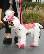 Llama Dog Homemade Costume