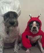 Lobster and Chef Costumes for Dogs