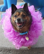 Loofah Dog Homemade Costume