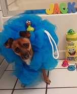 Loofah Pet Homemade Costume