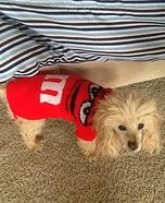 M & M Dog Costume