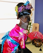 Madame Butterfly Costume for Dogs