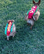 Mama Hotdog & Baby Hotdogs Homemade Costume