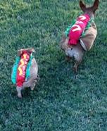Mama Hotdog & Baby Hotdogs Homemade Costume