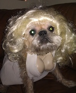Marilyn Monroe Costume for Dogs