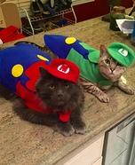 Mario and Luigi Cats Homemade Costume