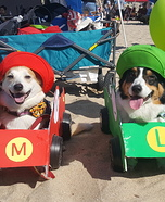 Mario and Luigi Dogs Homemade Costume