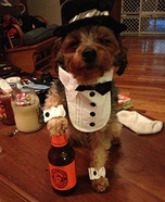 Homemade Groom Costume for Dogs