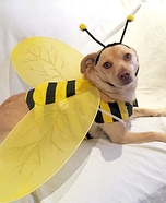 Max-Bee Homemade Costume