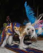 Mayan Princess Dog Costume