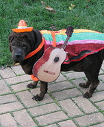 Mexican Musician Dog Costume