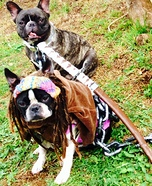 Creative costume ideas for dogs: Michonne from the Walking Dead