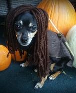 Michonne Mini Dog Homemade Costume