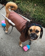 Michonne Walking Dead Dog Homemade Costume