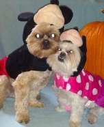 Mickey & Minnie Eeyore and Tigger Pet Costumes