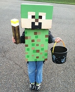 Minecraft Homemade Costume