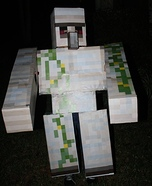 Minecraft Iron Golem Homemade Costume