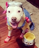 Minion Z Dog Homemade Costume