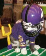 Minnesota Vikings Quarterback Cat Homemade Costume