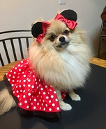 Minnie Belle Homemade Costume