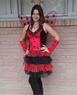 Miss Lady Bug Costume