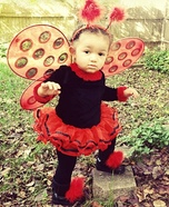 Miss Lady Bug Baby Costume