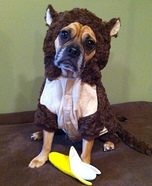 Homemade Monkey Costume for Dogs