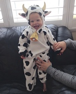 Mr Cow Costume