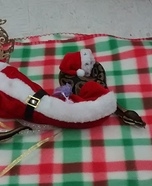 Mrs. Clause Snake Homemade Costume