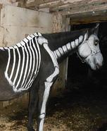 Ms Bones Horse Costume