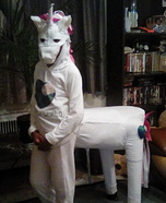 Mystical Unicorn Homemade Costume