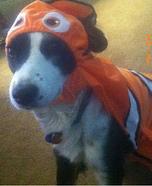 Finding Nemo Dog Costume