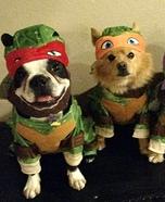 Ninja Turtle Dogs Homemade Costume