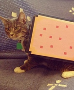 Nyan Cat Homemade Costume