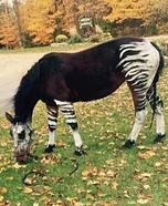 Okapi Horse Homemade Costume