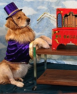 Dog costumes - Organ grinder & his monkey