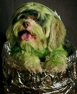 Poodle the Grouch Costume