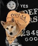 Ouija Inu Homemade Costume
