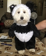 Panda Bear Homemade Costume
