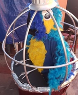 Parrot in a Cage Homemade Costume