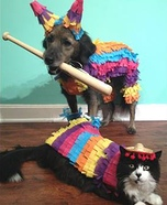 Creative costume ideas for dogs: Party Animals