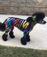 Party Zebra Homemade Costume
