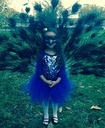 Peacock Homemade Costume