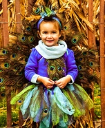 DIY Peacock Costume for Girls