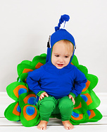 Homemade Peacock Baby Costume