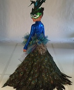 DIY Peacock Girl's Costume