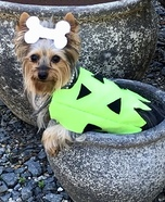 Pebbles Dog Homemade Costume