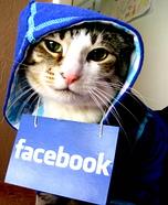 Cat in Facebook Hoodie